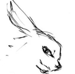 兔兔漫畫免費版
